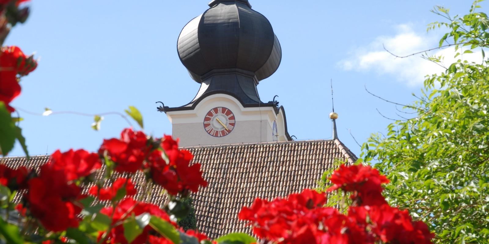 Rosendorf Nals Südtirol