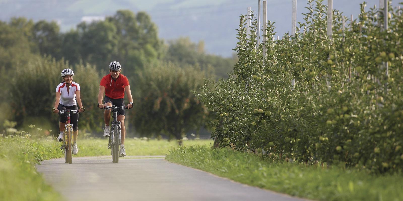Radfahren Südtirol